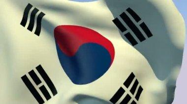 Flag of South Korea — Stock Video
