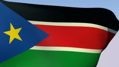 Flag of South Sudan — Stock Video