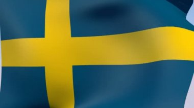 Flag of Sweden — Stock Video