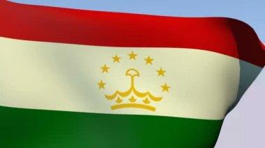 Flag of Tajikistan — Stock Video