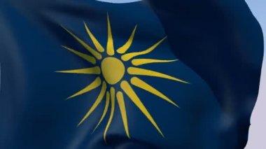 Flag of the Greek Macedonia — Stock Video