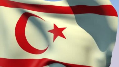 Flag of the Turkish Republic of Northern Cyprus — Stock Video