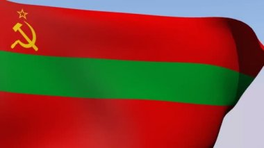 Flag of Transnistria State — Stock Video