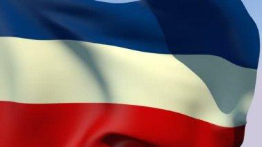 Flag of Yugoslavia — Stock Video