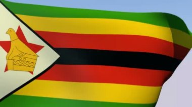 Flag of Zimbabwe — Stock Video