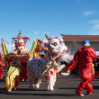 Chinese New Year Performace — Stock Photo #13140732