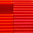 Red or orange neon texture — ストック写真