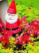 Krasnal ogrodowy — Zdjęcie stockowe