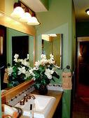 Büyük banyo — Stok fotoğraf