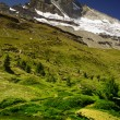 Matterhorn with greenery — Stock fotografie #12874148