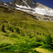 Foto Stock: Matterhorn with greenery