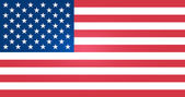 Flag of United States — Vector de stock