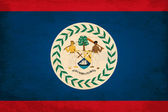 Grunge Flag of Belize — Stock Vector
