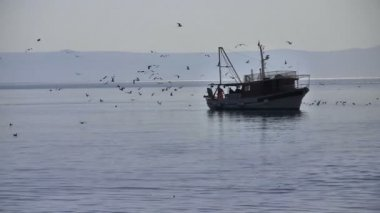 Balıkçı teknesi — Stok video