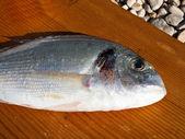 Gilthead fish at table — Stock Photo
