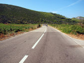 景区的路 — 图库照片
