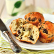 Cheese and Mushroom Muffins - Stock Photo
