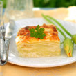 Stock Photo: Piece of Zucchini Lasagna