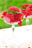 Red currant dessert wine sorbet, copy space for your text — Stock Photo