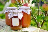 Konserve elma suyu — Stok fotoğraf