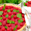 Fresh Raspberry Jelly Tart, copy space for your text, selective focus — Foto Stock #34602403
