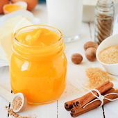 Pumpkin Puree Surrounded with Pumpkin Pie Ingredients — Stock Photo