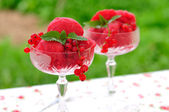 Red currant dessert wine sorbet, copy space for your text — Stockfoto