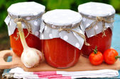 Canned Tomato Sauce — Stock Photo