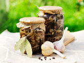 Canned Marinated Honey Fungus — Stock Photo
