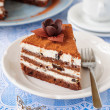 Chocolate, Quark and Prune Layer Cake — Stock Photo #36515021