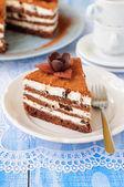Chocolate, Quark and Prune Layer Cake — Stock Photo
