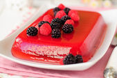 Fresh Raspberry and Champagne Jelly — Stock Photo