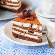 Stock Photo: Chocolate, Quark and Prune Layer Cake