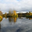 Sky reflection in a pond in the autumn — Stock Photo