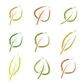 2 φύλλα του φθινοπώρου — Διανυσματικό Αρχείο