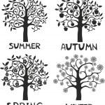 Four seasons - spring, summer, autumn, winter. — Stock Vector