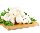 Brancos cogumelos — Fotografia Stock