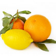 Citrus fruits on white background: mandarin, lemon and orangeCitrus fruits on white background: mandarin, lemon and orange — Stock Photo