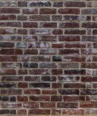 Fundo da parede de tijolo — Fotografia Stock