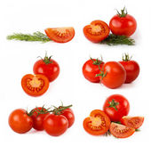 Set of tomato vegetables — Stock Photo