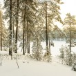 Russian winter lake covered with snow and ice — Stock Photo