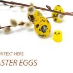 Paskalya yortusu yumurta ve tavuk — Stok fotoğraf
