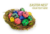 Easter eggs in the nest — Stock Photo