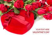 Perfect Valentines roses — Stock Photo