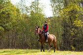 Elegancki atrakcyjna kobieta na koniu — Zdjęcie stockowe