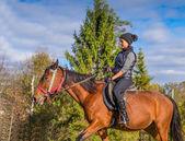 エレガントな魅力的な女性は馬に乗って — ストック写真