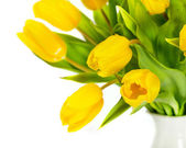 Yellow tulip flowers — Photo
