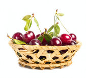 Fresh Cherry fruits — Stock Photo