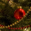 Stock Photo: Christmas tree Close up