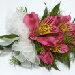 Beautiful pink Freeshia corsage — Stock Photo